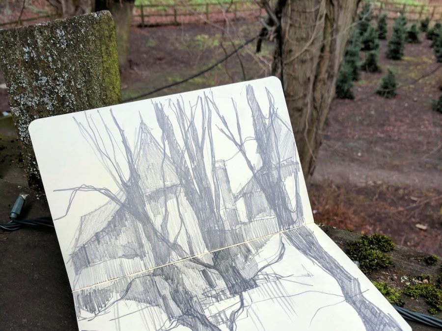 Amongst the towering trees – Process of a painting