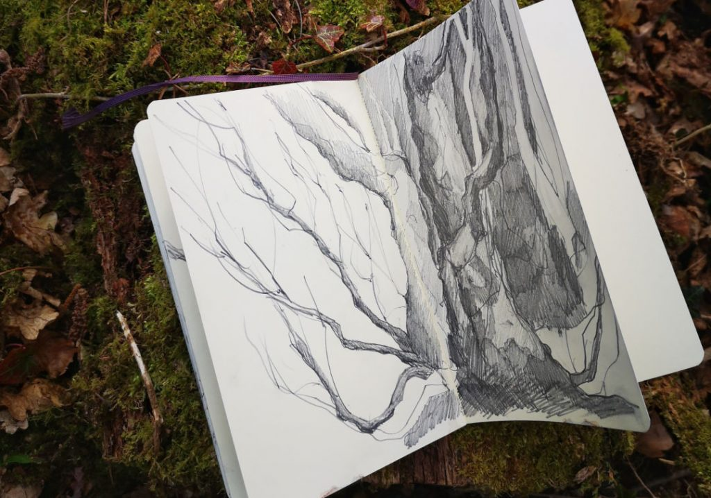 sketchbook page from forest walk #2