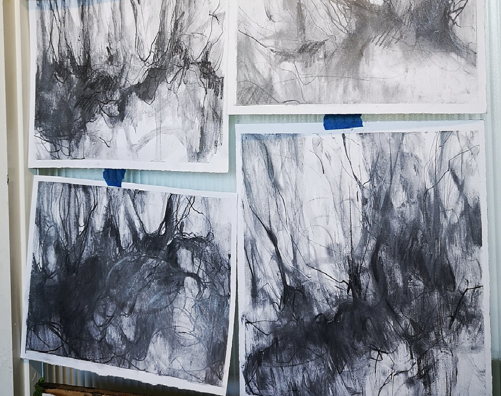 Graphite sketches on my wall